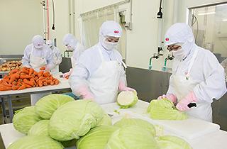 野菜加工室の設置